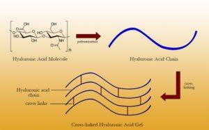 Acid hyaluronic với các liên kết chéo dùng trong filler tại Học viện kinh doanh Spa SBA